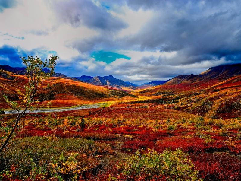 Die volle Farbenpracht: Indian Summer im Yukon-Territory.
