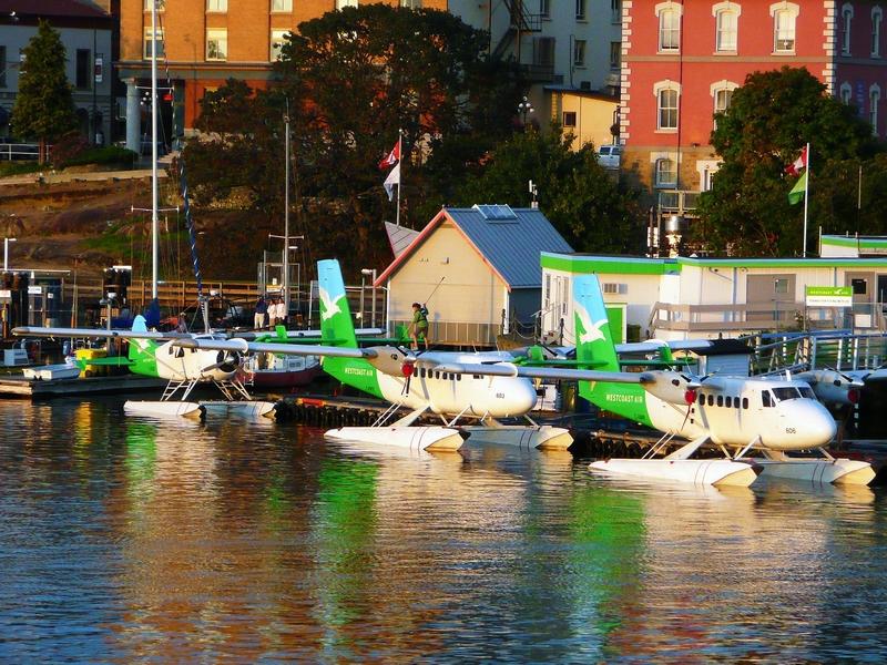 Kleine Flotte von Wasserfleugen im Hafen von Victoria.